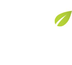 M_White_Green