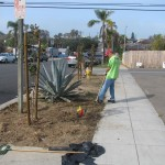 Christian Church in Encinitas serving North County community
