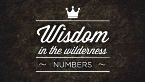 Wisdom in The Wilderness