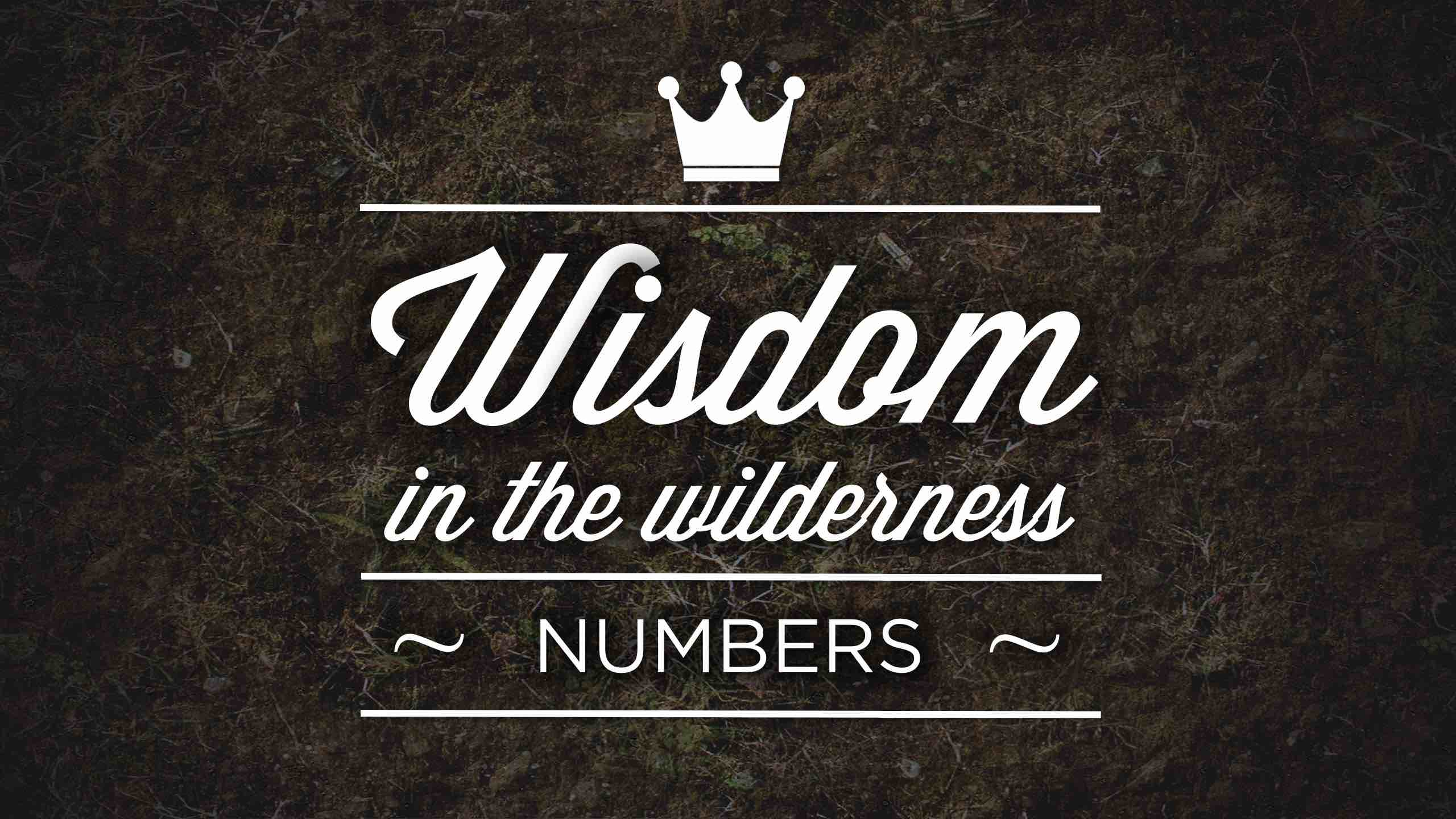 Wisdom in The Wilderness