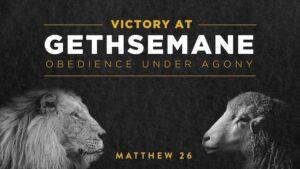 Matthew 26:31-46 - Gethsemane Obedience Under Agony
