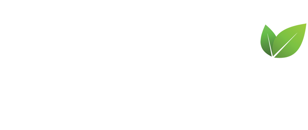 Mission Groups, Small Groups, Community Groups, Home Groups, Life Groups,